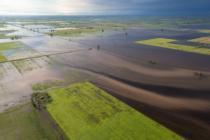 Técnicos del INTA están Trabajando en Emergencias que Afectan la Producción Ganadera y Agrícola en Argentina