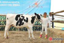 SEMBRYO: Celebra su 2do Aniversario en la Ciudad de Trujillo Anunciando sus Planes para este 2017