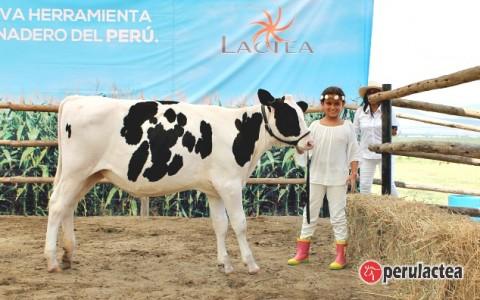 lactea_2doaniversario_54