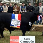 El Milagro Paraguayo de la Carne Bovina
