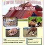 Lambayeque: II Simposio de Teriogenología