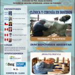 UNMSM: Diplomatura en Clínica y Cirugía de Bovinos
