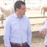 Huaral: Buscan Impulsar y Promover Sector Ganadero Instituto Nacional de Innovación Agraria
