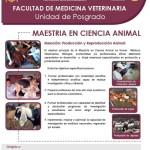 Maestría en Ciencias Veterinarias: Salud animal, sanidad avícola, sanidad acuícola, medicina y cirugía Animal