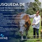 Adconsult Peru: Busca Asesor Técnico Comercial