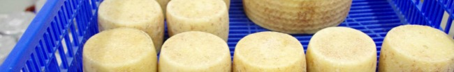 HACCP_quesos