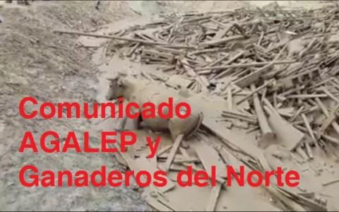 agalep_ganaderia_peligro_1