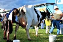 Cajamarca Solicita Puente Aéreo  para Trasladar Productos Lácteos