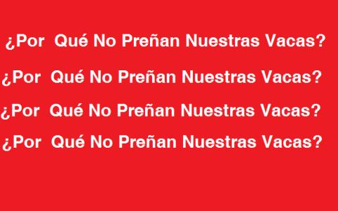 porque _las_vacas_no_preñan