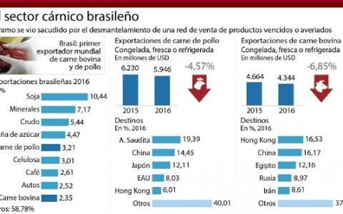 sector_carnico_brasileño