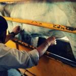 México Implementa Estaciones Cuarentenarias en su Programa de Lucha contra la Garrapata