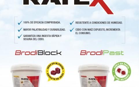 Emailing_Ratex_montana_perulactea