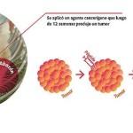 Proteína del Calostro Bovino Serviría para Combatir Cáncer en Humanos