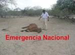 emergencia_nacional_peru