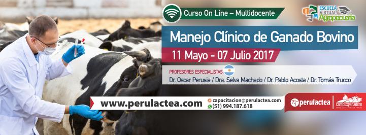 face manejo_clinico_bovino
