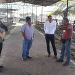 Dirección General de Ganadería Realizó Taller de Trabajo en La Libertad