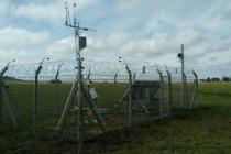 Técnicos Argentinos Medirán Gases Emitidos por la Ganadería