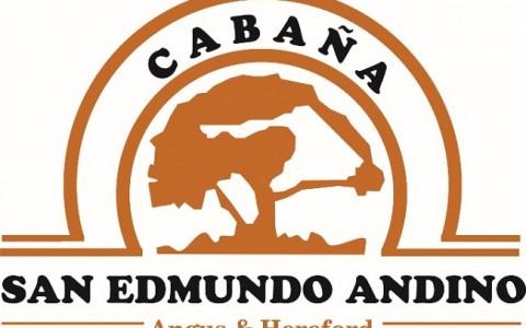 san_edmundo_andino