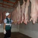 Senasa Inspecciona Matadero en San Martín para Autorización de Funcionamiento