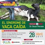 EN VIVO: El Síndrome de Vaca Caída - Acceso Gratuito