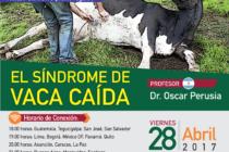 EN VIVO: El Síndrome de Vaca Caída – Acceso Gratuito