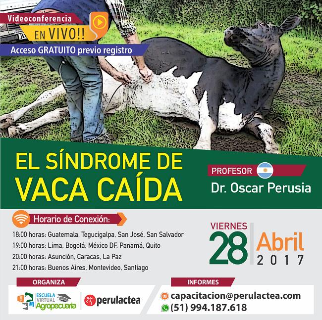 sindrome_de_vaca_caida