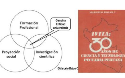 Marcelo Rojas_30_años_de_ciencia_tecnologia
