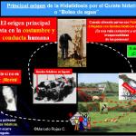 Equinococosis Quística/Hidatidosis: Posverdad de una Confusa Terminología para el Aprendizaje y el Servicio Social