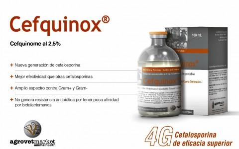 agrovet_market_cefquinox