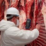Carnes Chilenas y Paraguayas Ganan Mercado tras Problemas con Brasil