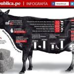 La ganadería, un nuevo polo de desarrollo para el Perú