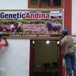 Inauguran Centro de Inseminación Artificial con Innovador Programa (TVP) en Amazonas – Perú