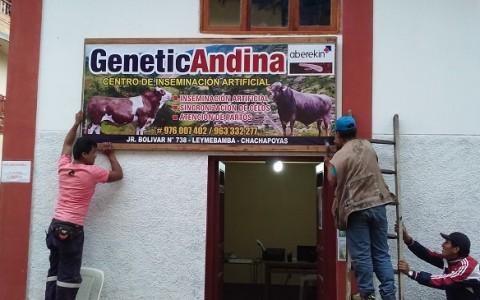 genetica_andina_chachapoyas