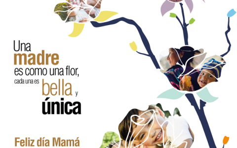 maMA_agrovet_market