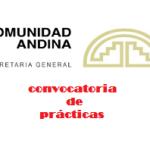 VIII Programa de Convocatoria de Prácticas en la Secretaría General de la Comunidad Andina