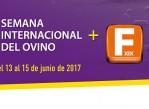 semana_internacional_ovino