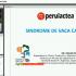 sindrome_de_la_vaca_caida