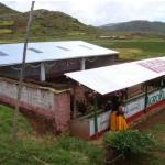 Puno: Rehabilitaron 60 Cobertizos para Proteger a Ganado de Heladas