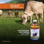 Extracal: Reconstituyente Vitamínico
