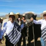 Minagri Instalará Plantas Procesadoras de Leche en Zonas Andinas