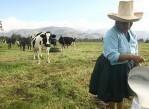 ministro_de_agricultura_ produccion_De_leche