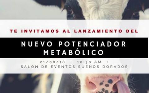 andeanvet_lanzamiento