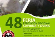 48° Feria Exposición Nacional Caprina Ovina de Colombia 🗓