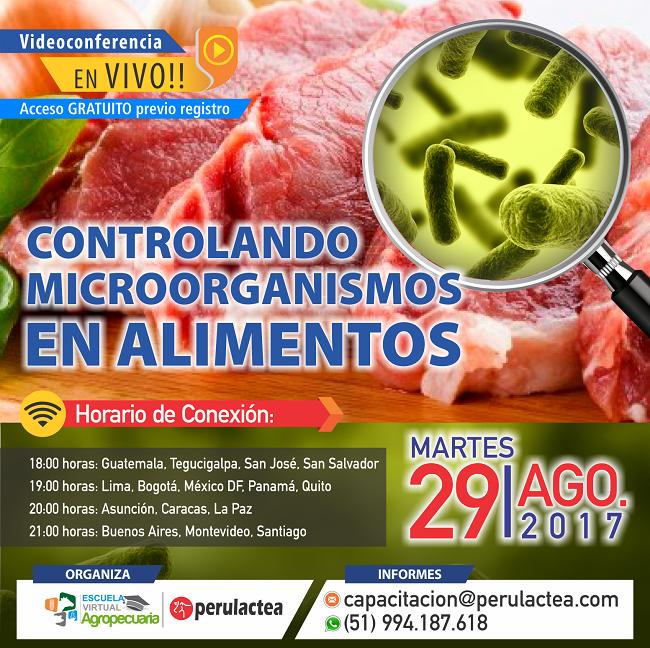 microorganismos_en_alimentos