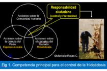 Prevención y Control de la Hidatidosis en el Nivel Local®: Micro Análisis Bibliográfico