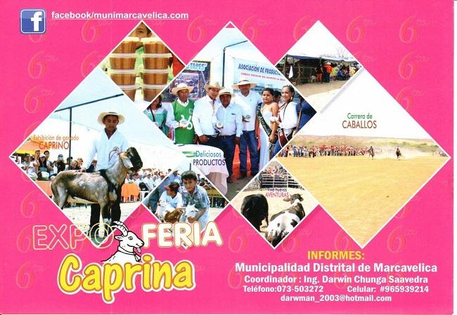 Expo_Feria_Caprina_Marcavelica_Sullana_2017