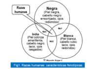 """Posverdad: """"La Raza es una invención"""""""