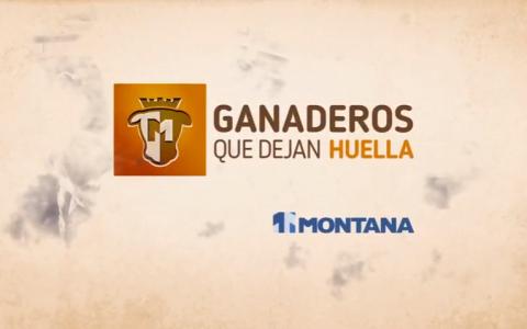 montana_video
