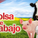Empresa Líder en el Sector Agropecuario Solicita: Ingeniero Zootecnista, Médico Veterinario y Técnico Agropecuario