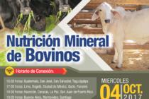 EN VIVO: Nutrición Mineral de Bovinos 🗓